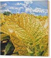 The Golden Leaf Wood Print
