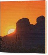 The Golden Light Of The Sonoran Desert  Wood Print