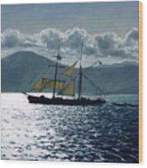 The Golden Plover Wood Print