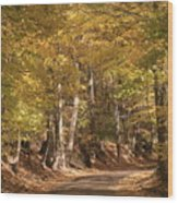 The Golden Road Wood Print