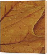 The Golden Time Wood Print