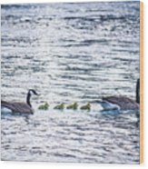 The Goose Family Wood Print