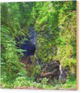 The Gorge In The Wood Wood Print