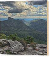 The Gorge Wood Print