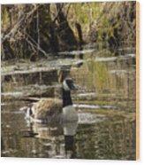 The Graceful Goose Wood Print