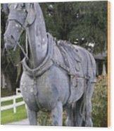 Horse At The Grand Oaks Resort Wood Print