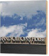 The Grand Ole Opry Nashville Tn Wood Print by Susanne Van Hulst