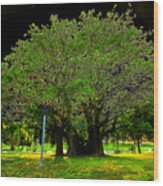 The Great Banyan Wood Print
