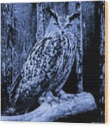 Majestic Great Horned Owl Blue Indigo Wood Print