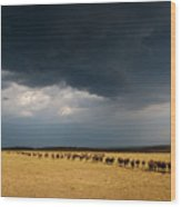 The Great Migration Wood Print