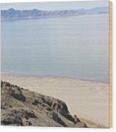 The Great Salt Lake 2 Wood Print