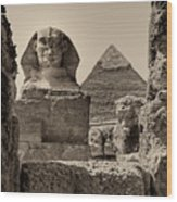 The Great Sphinx And Pyramid Of Khafre Wood Print