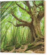 The Great Tree Wood Print