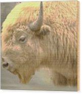 The Great White Buffalo Wood Print