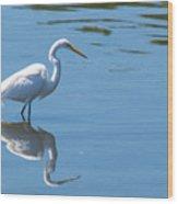 The Great White Fisherman Wood Print