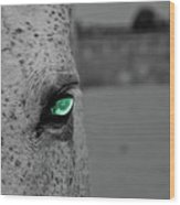 The Green Eyed Horse Wood Print