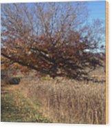 The Green Grass Road Wood Print