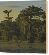 The Green Green Trees Of Home Wood Print