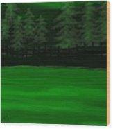 The Green Lake Wood Print