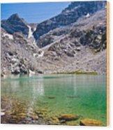 The Green Of Treasure Lake 3  Wood Print