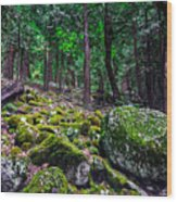 The Green Room Wood Print