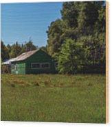 The Green Shack Wood Print