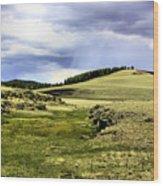 The Green White Mountains 1825 Wood Print