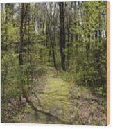 The Greening Wood Print