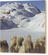 The Greenlandic Road Wood Print