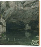 The Grotto Of The Loue Wood Print by Gustave Courbet