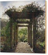 The Grove Wood Print