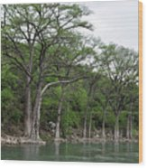 The Guadalupe River Wood Print
