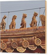 The Guardians Of The Forbidden City Wood Print