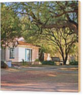 The Guest House  Wood Print by Donna Greene
