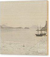 The Gulf Of Pozzuoli Wood Print