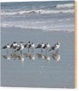 The Gull Gang Wood Print