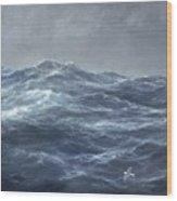 The Gull's Way Wood Print by Richard Willis