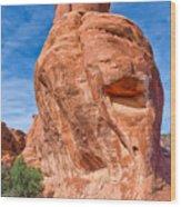 The Happy Rock Wood Print