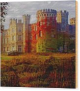 The Haunted Castle Wood Print