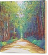 The Haunted Swamp  Wood Print