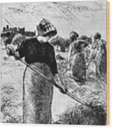 The Hayymaker Camille Pissarro Wood Print