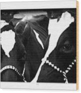 The Herd Wood Print