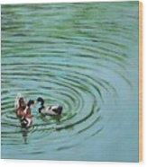 The Herd Series - Duck Meet Wood Print