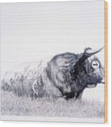 The Herdmaster Wood Print