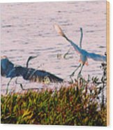 The Heron and the Egret Wood Print