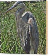 The Heron Wood Print