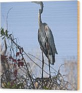 The Heron Perch Wood Print
