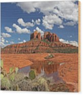 The High Desert Drinks Wood Print by Gary Kaylor