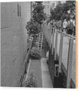 The High Line 158 Wood Print