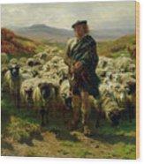The Highland Shepherd Wood Print by Rosa Bonheur